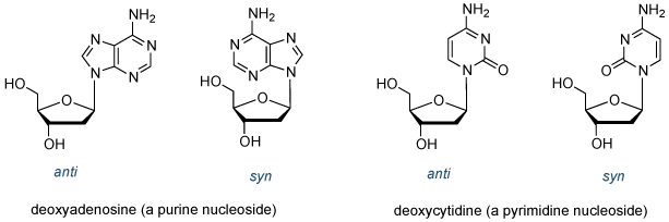 的<em> SYN </ em>的和的<em>抗</ em>的核苷构象结构