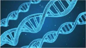 癌症基因检测早筛早诊早治必须重视!